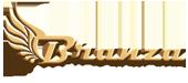 Branza Web Design & Development Services